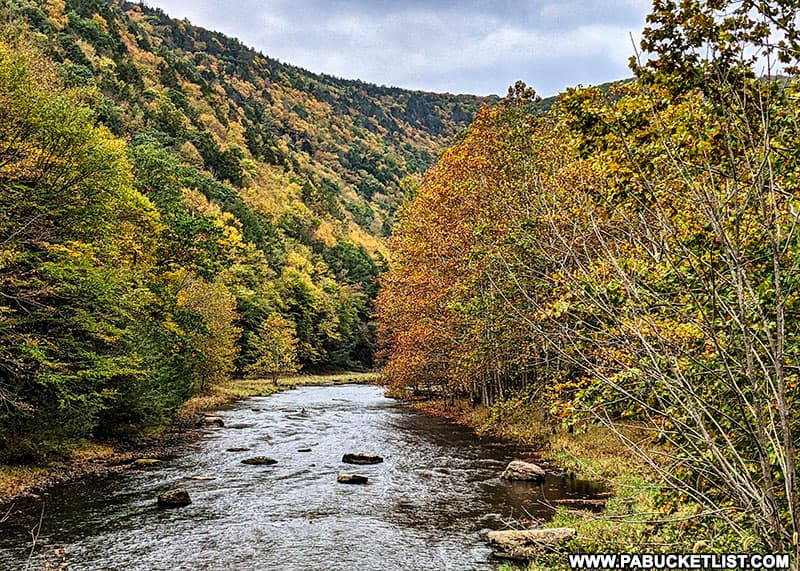 Fall foliage views around Kettle Creek on October 12th, 2021.