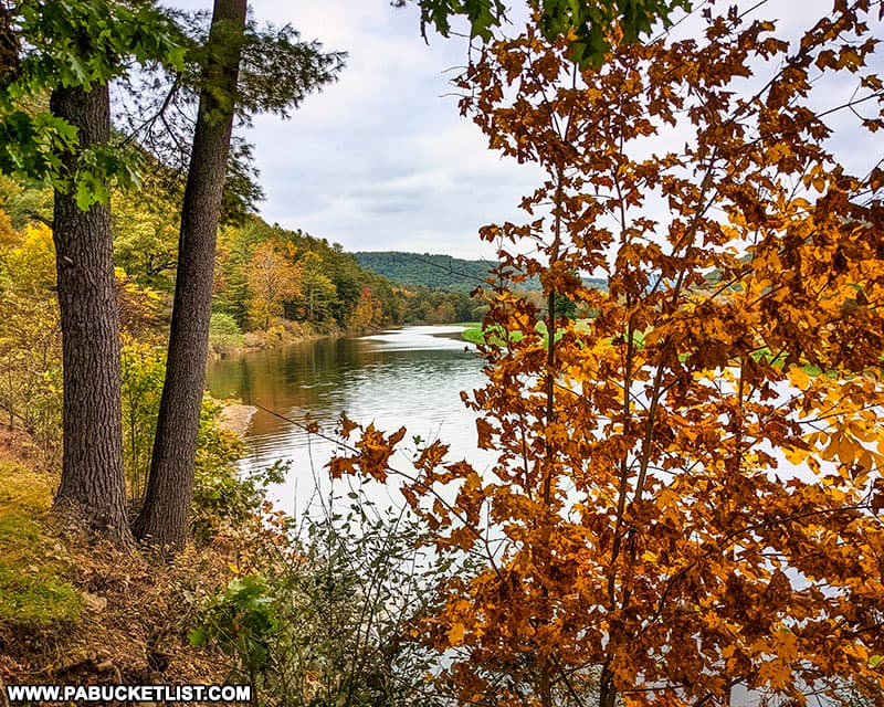 Fall foliage views to the north along Kettle Creek on October 12th, 2021.
