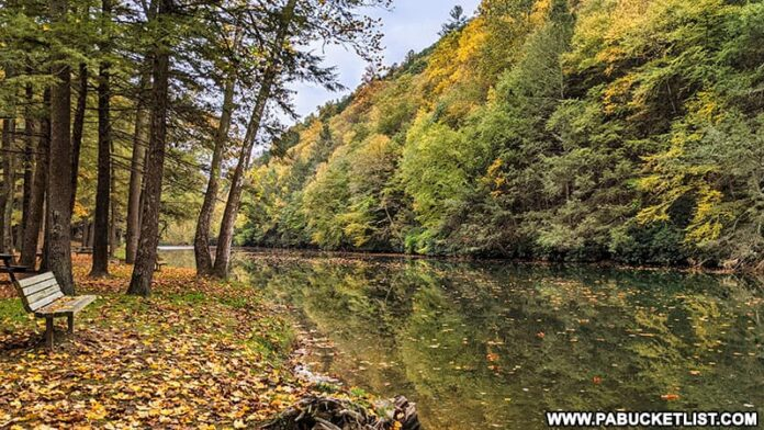 Fall foliage views from the lower campground at Kettle Creek State Park on October 12th, 2021.