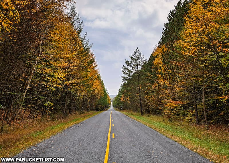 The Quehanna Highway on October 12th, 2021.