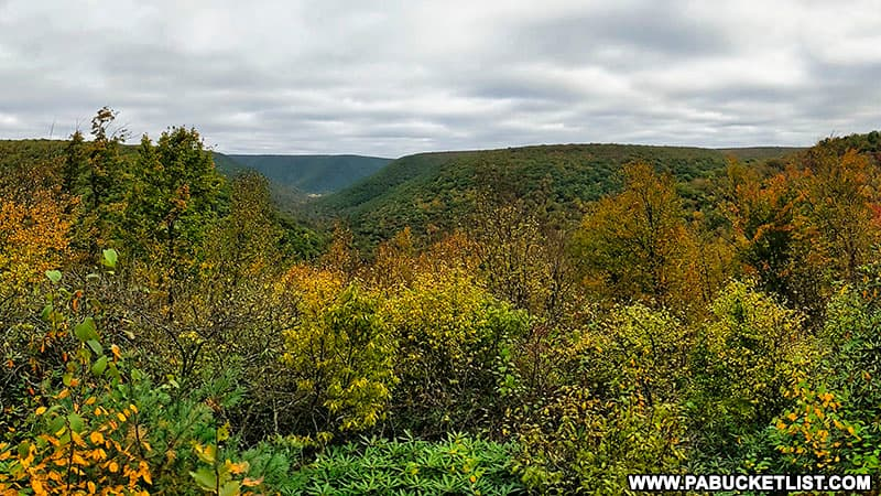 Fall foliage at Red Run Gorge Vista on October 12th, 2021.