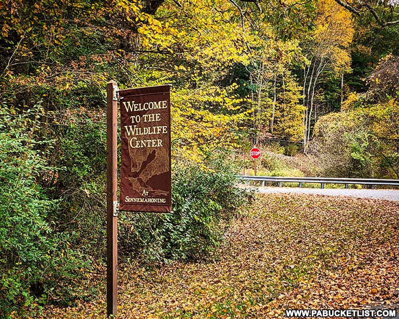 Fall foliage around the Wildlife Center sign at Sinnemahoning State Park on October 12th, 2021.