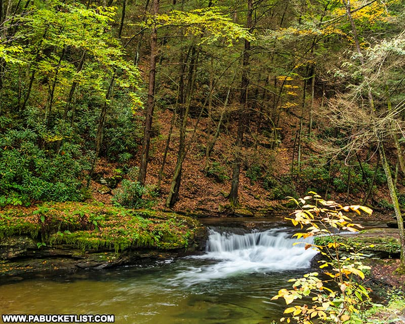 Fall foliage at Wykoff Run Falls in the Quehanna Wild Area on October 12th, 2021.